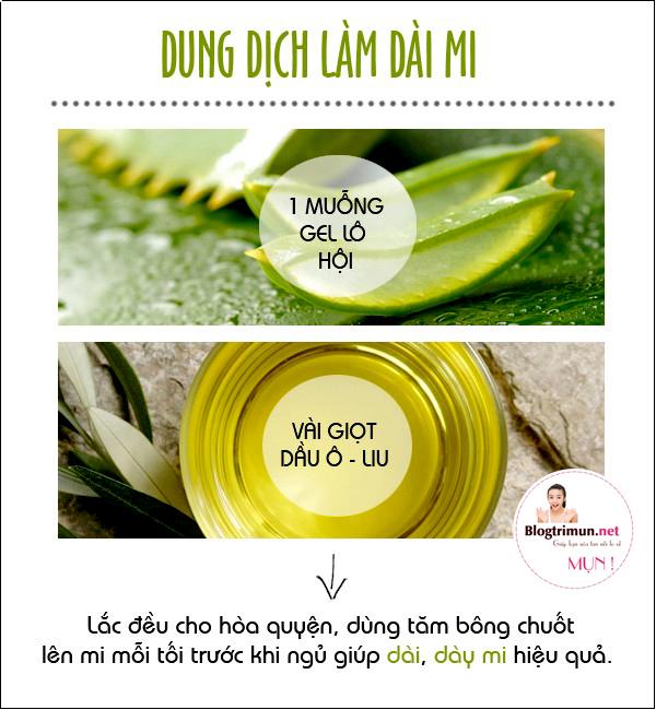 cong-dung-nha-dam-5